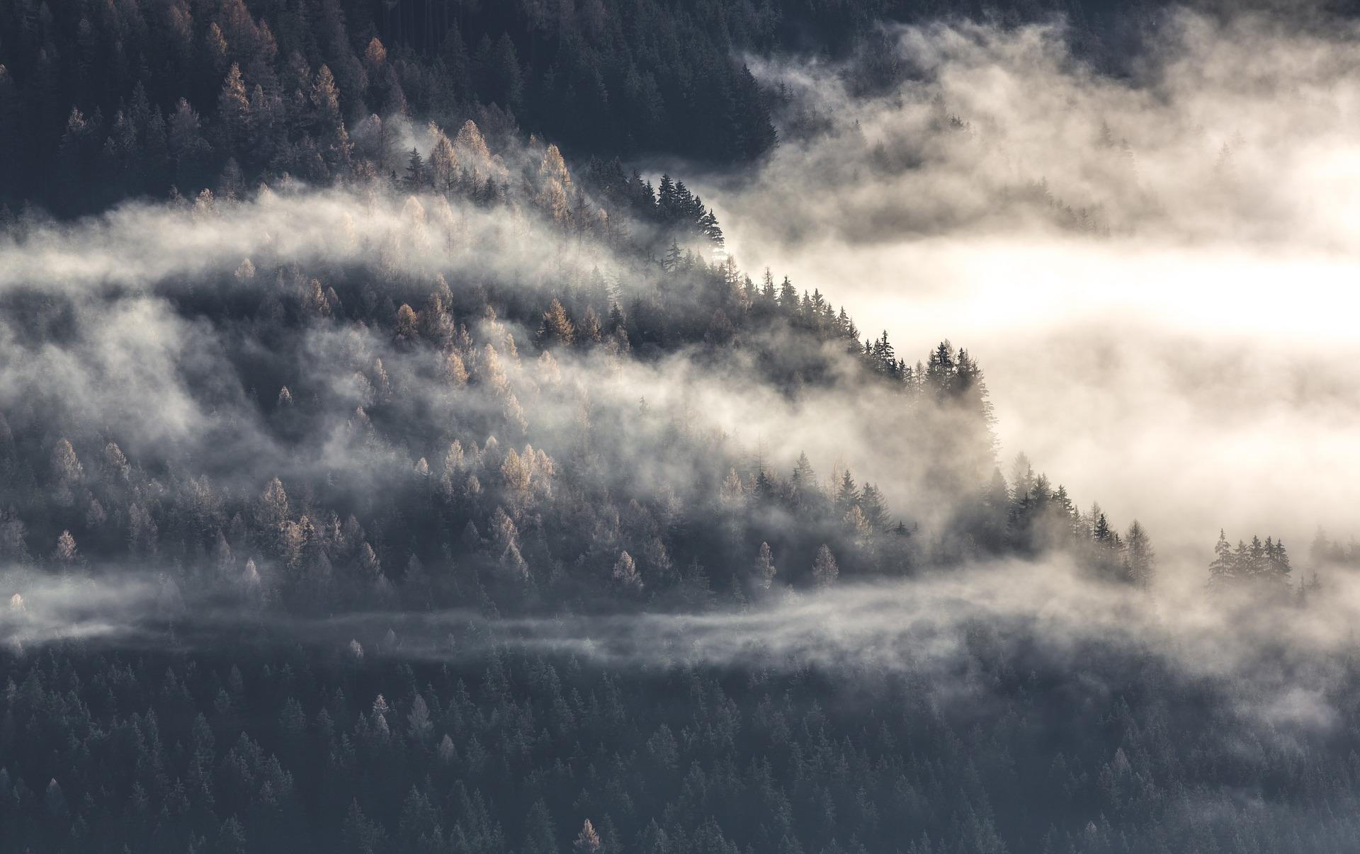 foggy atmosphere